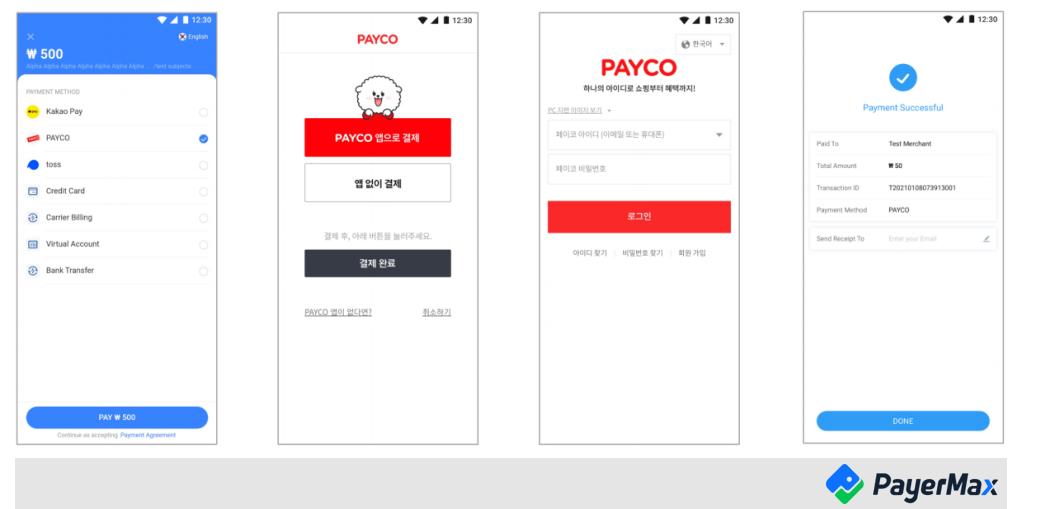 跨境支付payco